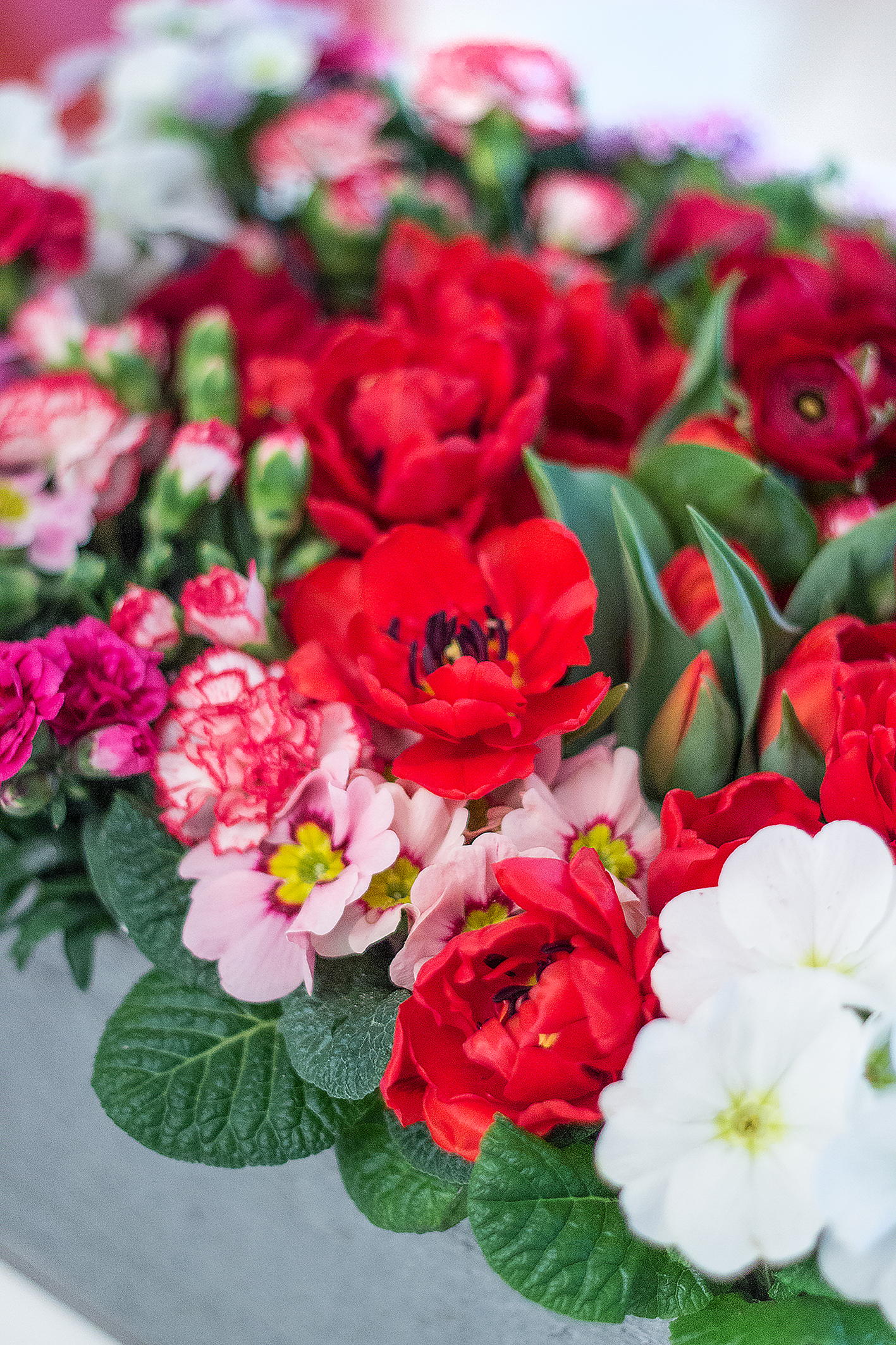 Blumenbeet DIY